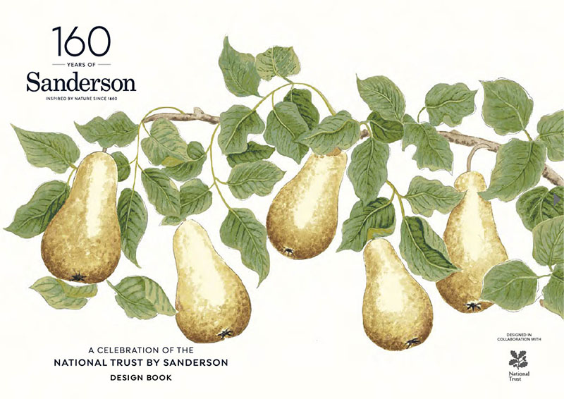 Hand drawn pears on branch design
