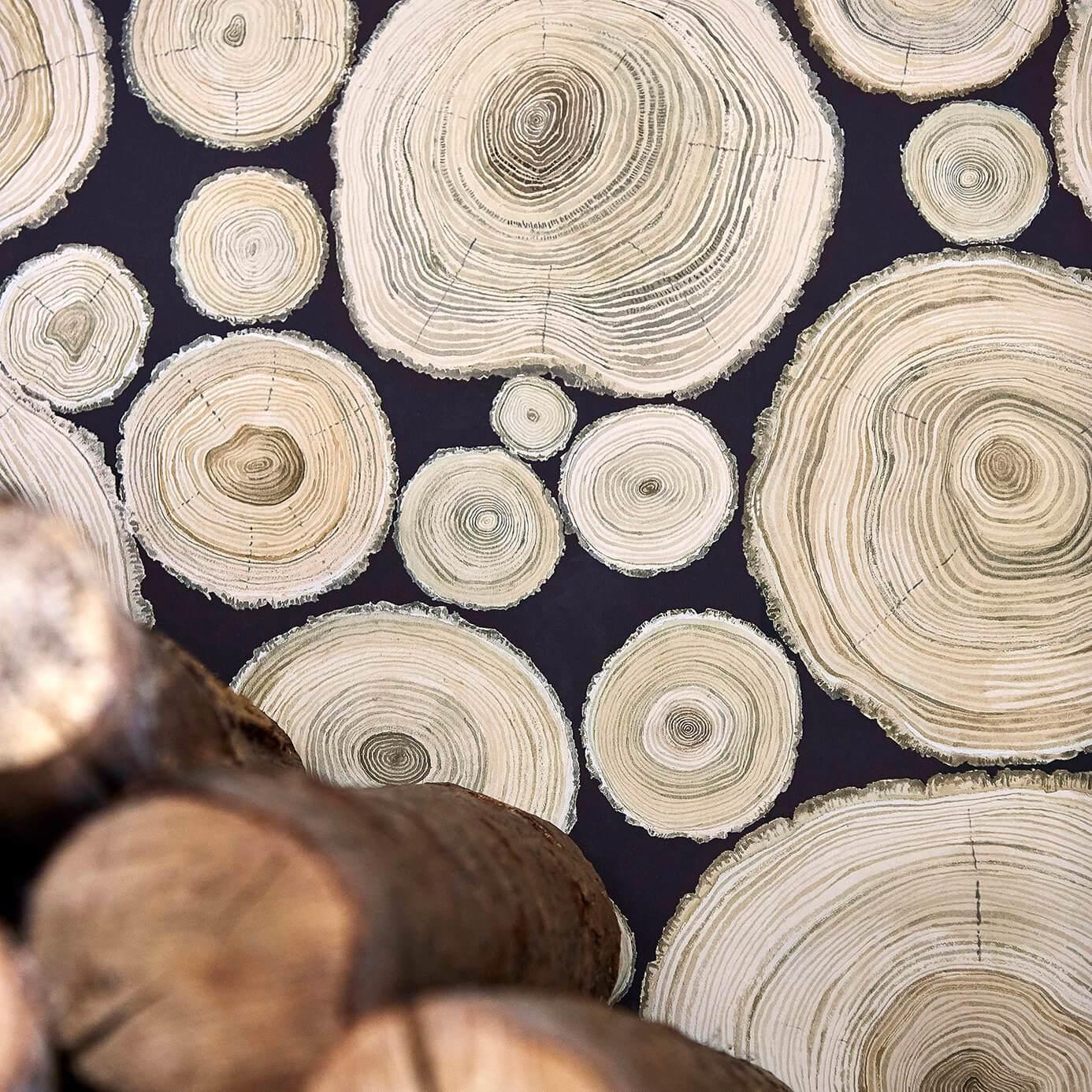 Alnwick Logs by SAN