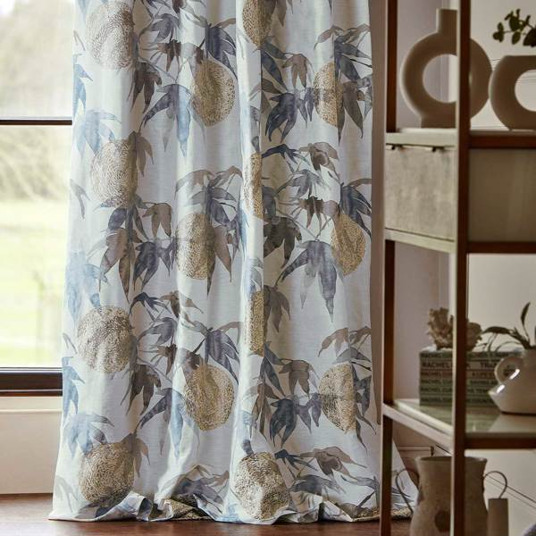 Acer by Zoffany