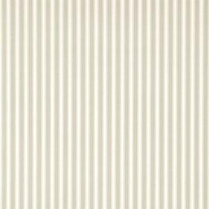 New Tiger Stripe by Sanderson