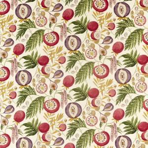 Jackfruit by Sanderson