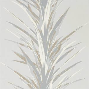Yucca by Sanderson