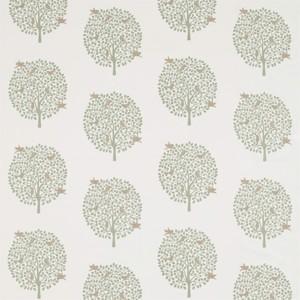 Bay Tree by Sanderson