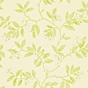 Blossom Bough by Sanderson