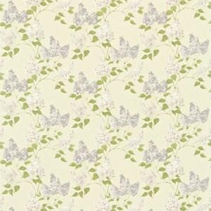 Lilacs by Sanderson