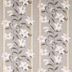 Lilium by Sanderson