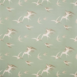 Swallows by Sanderson