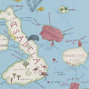 Galapagos by Sanderson