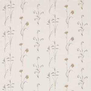 Meadow Grasses by Sanderson