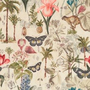 Botany by Clarke & Clarke