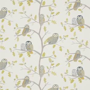 Little Owls by Harlequin