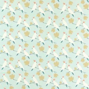 Love Birds by Scion