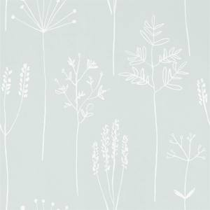 Stipa by Scion