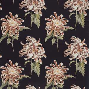 Evelyn by Zoffany