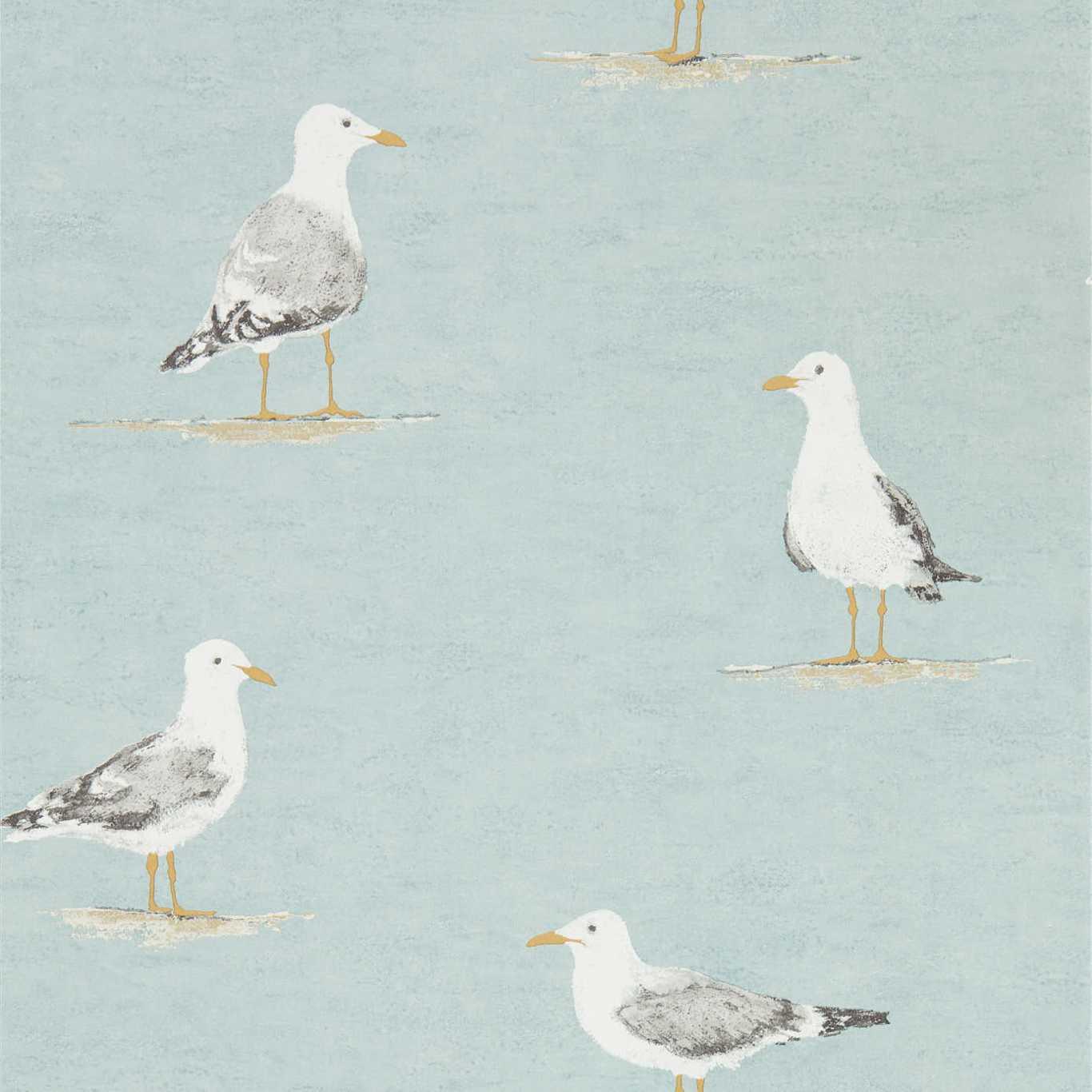 Shore Birds by HOM