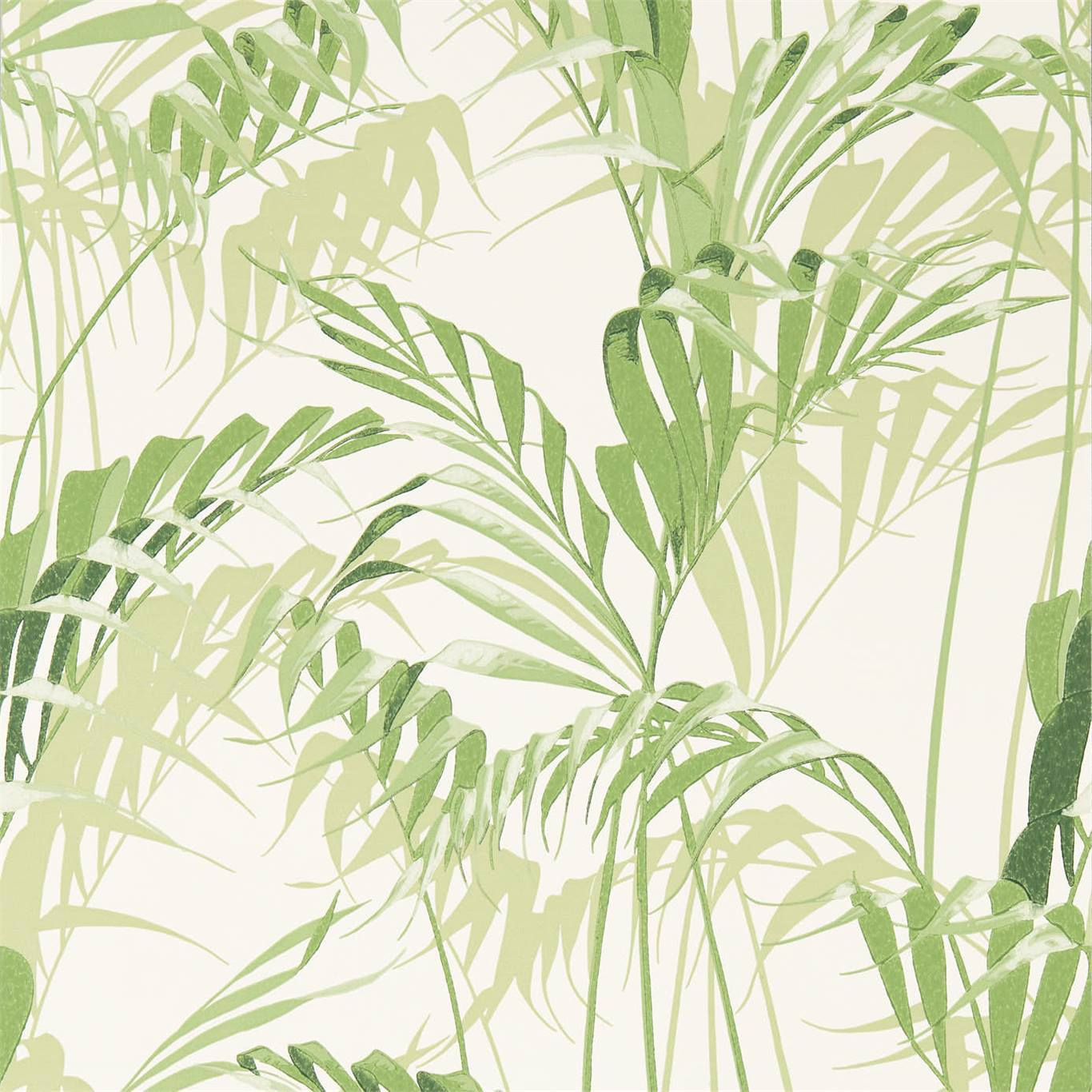 Palm House by SAN
