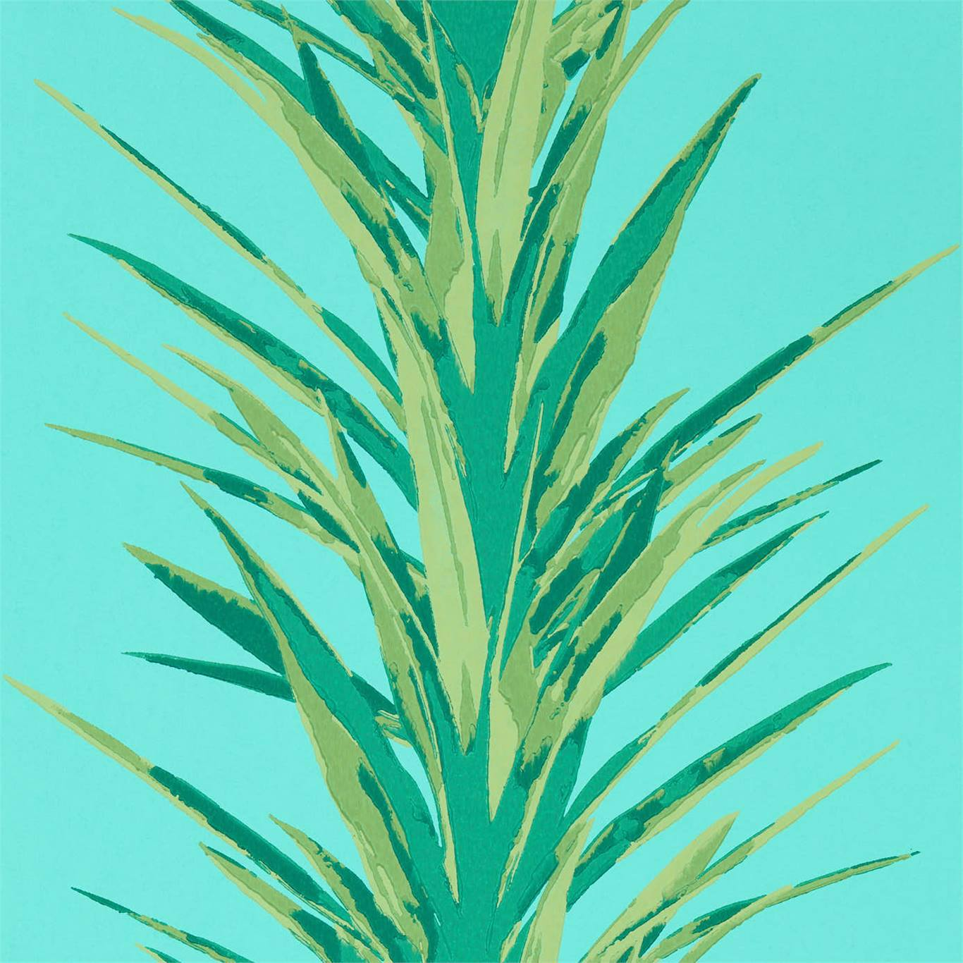 Yucca by SAN