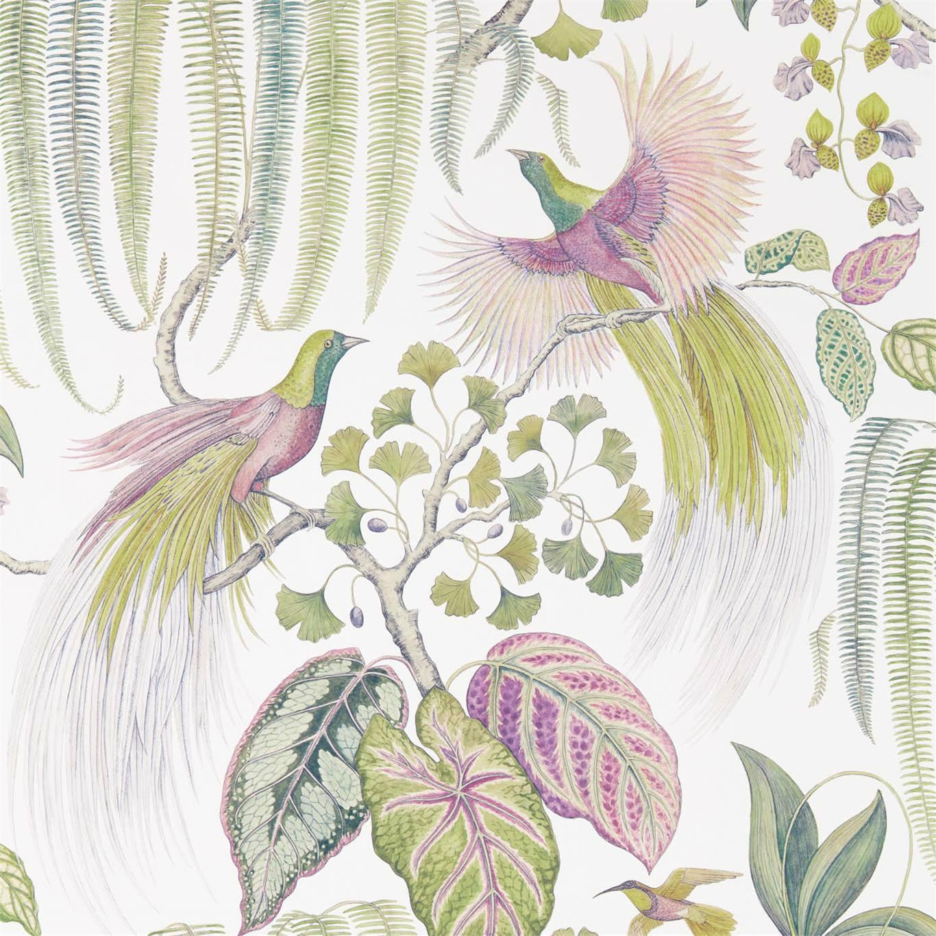 Bird Of Paradise by SAN
