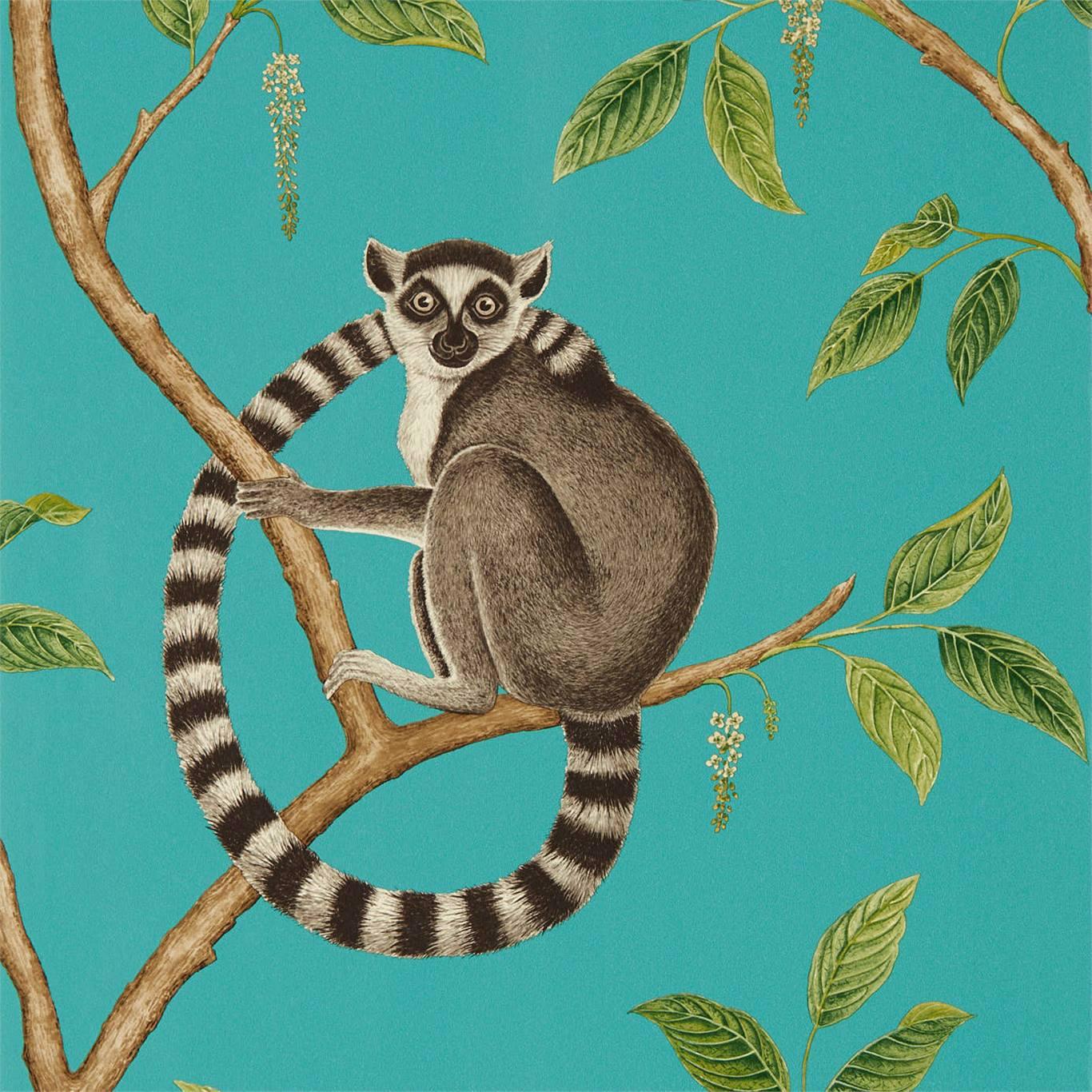 Ringtailed Lemur by SAN