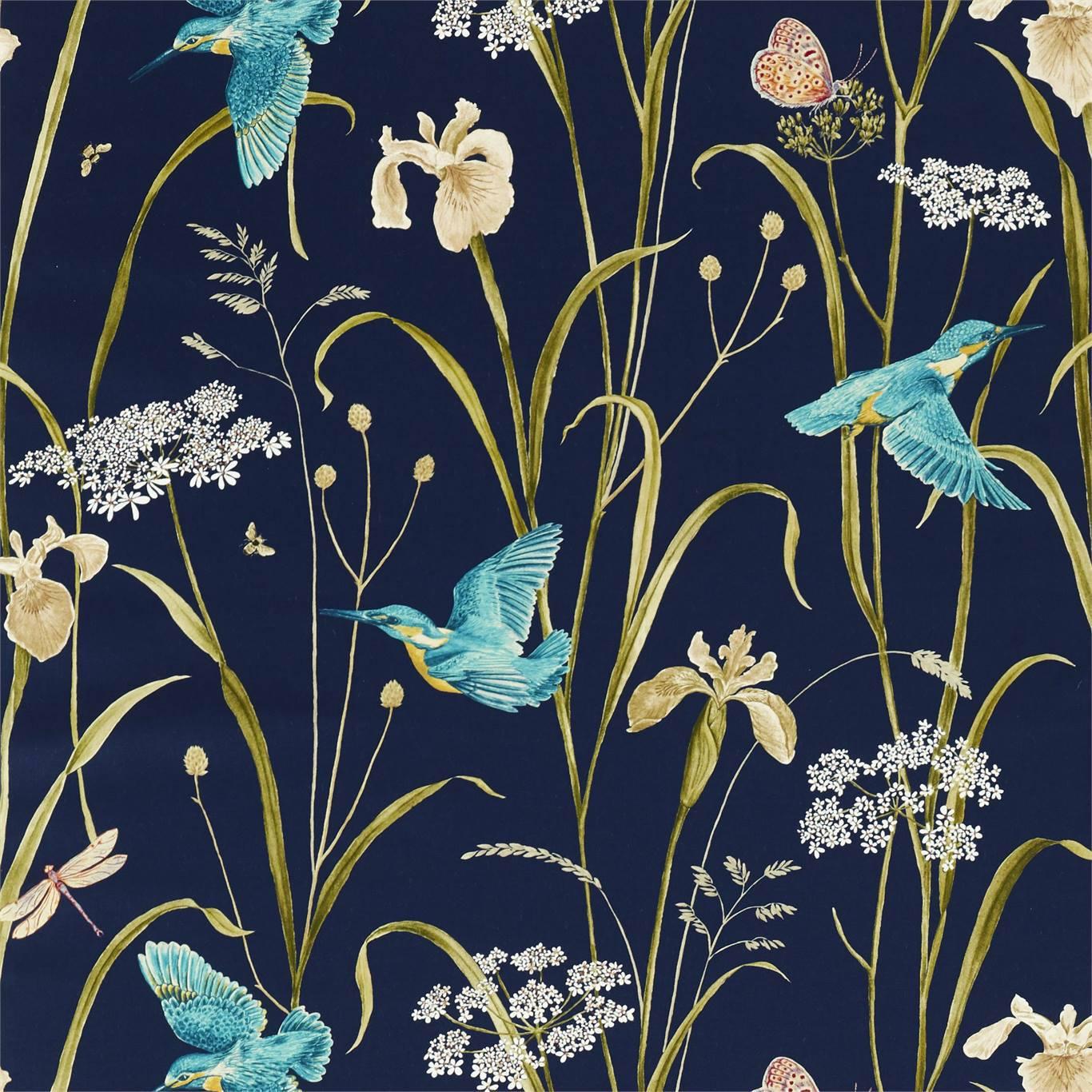 Kingfisher & Iris by SAN