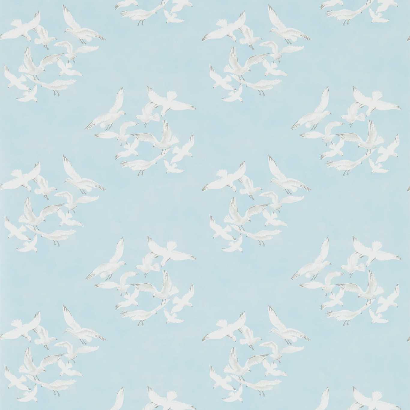 Seagulls by SAN