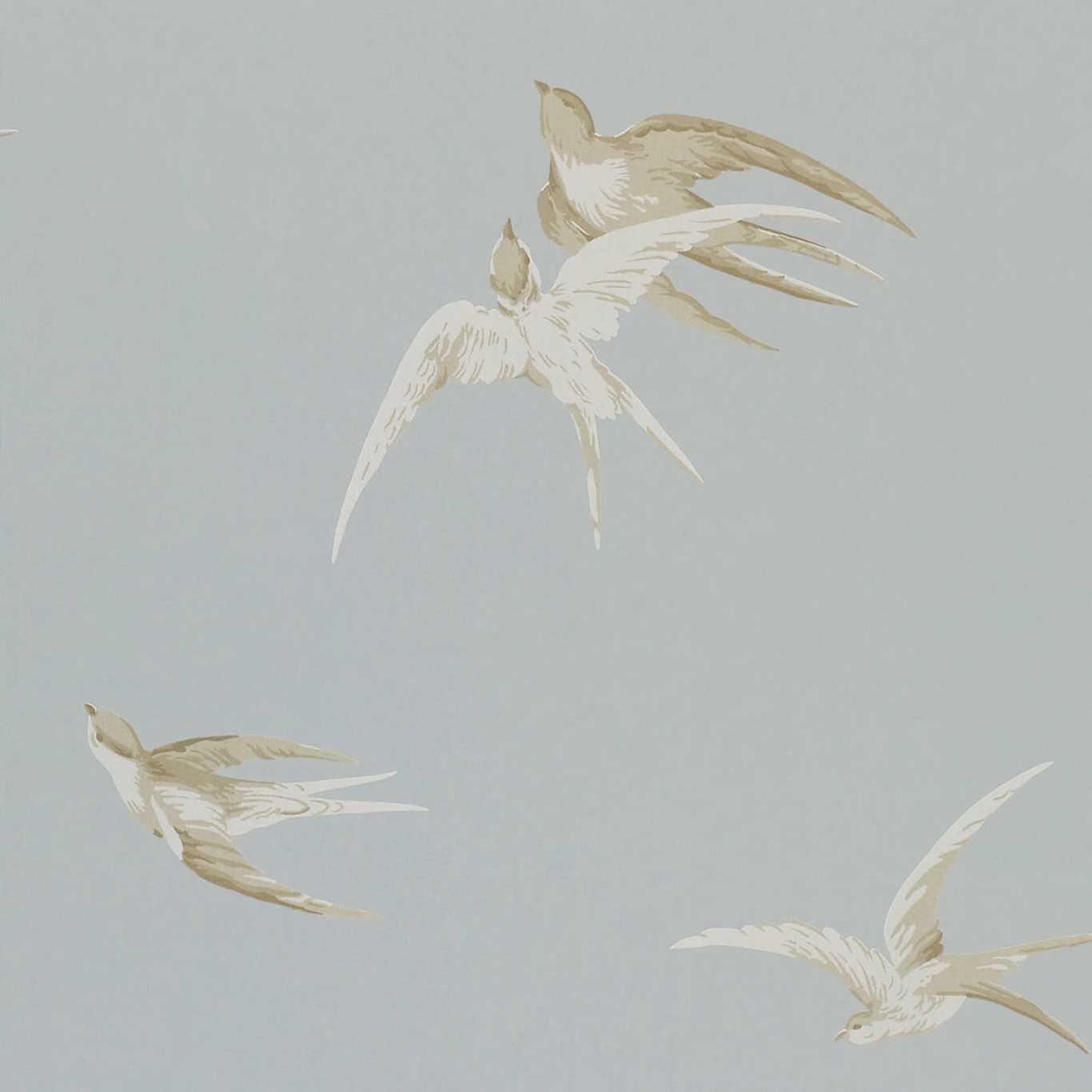 Swallows by SAN