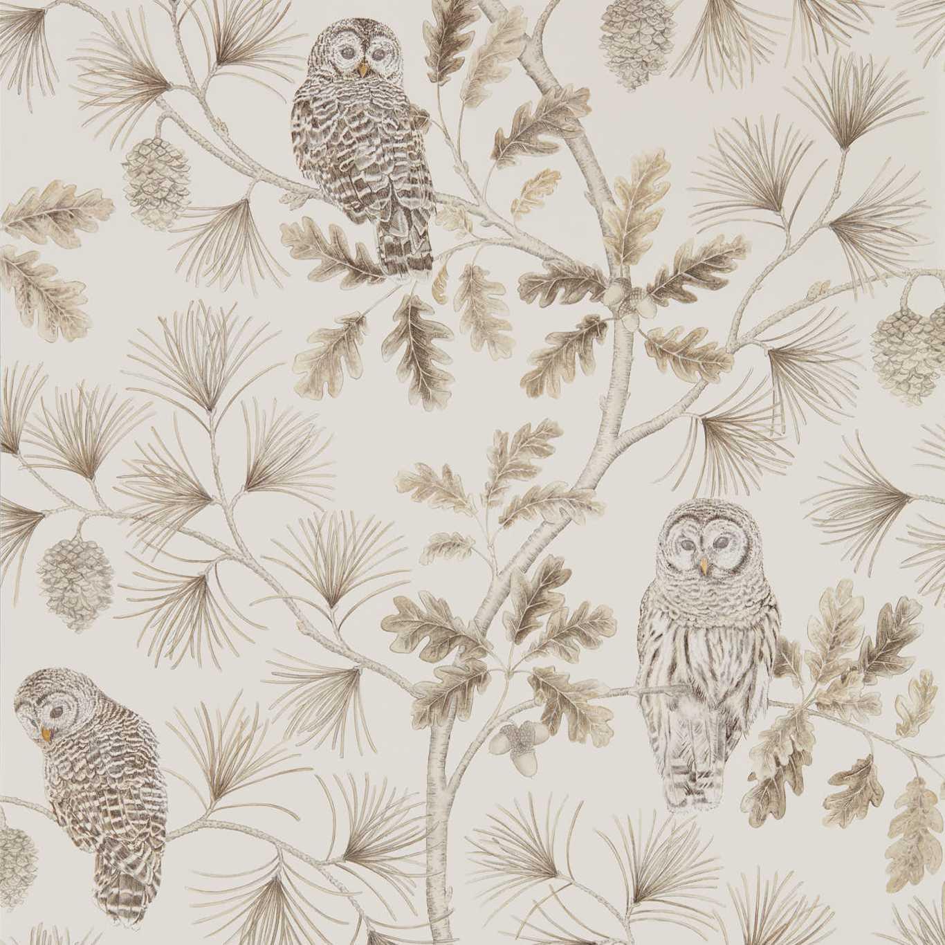 Owlswick by SAN