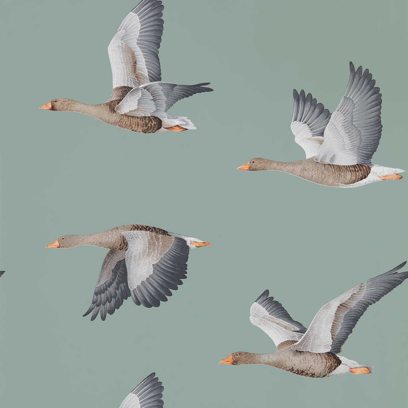 Elysian Geese by SAN