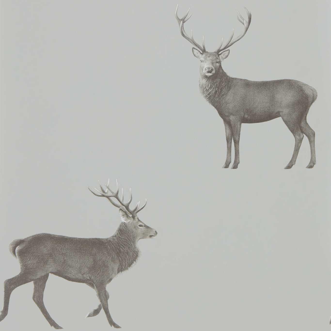 Evesham Deer by SAN