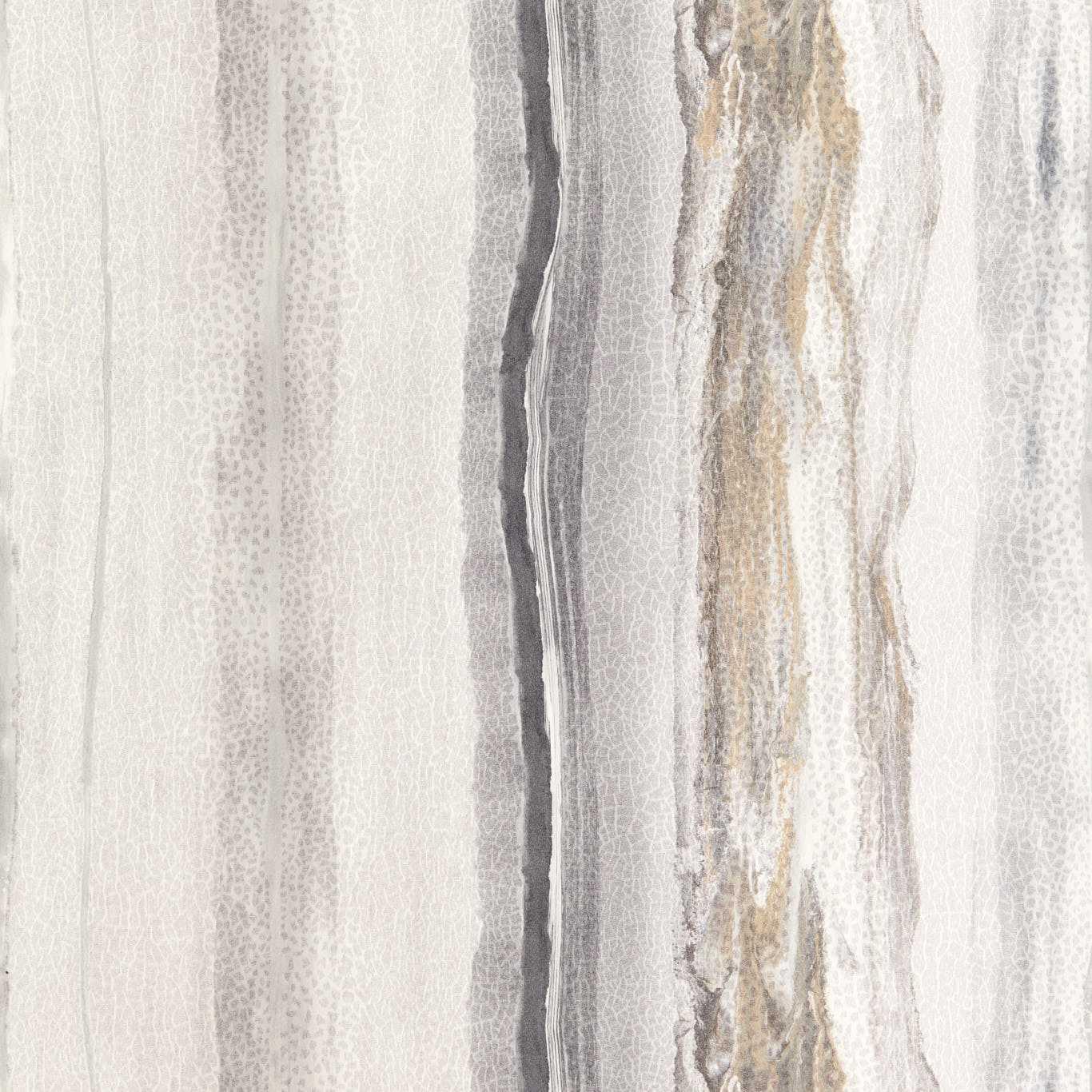 Vitruvius by ANT