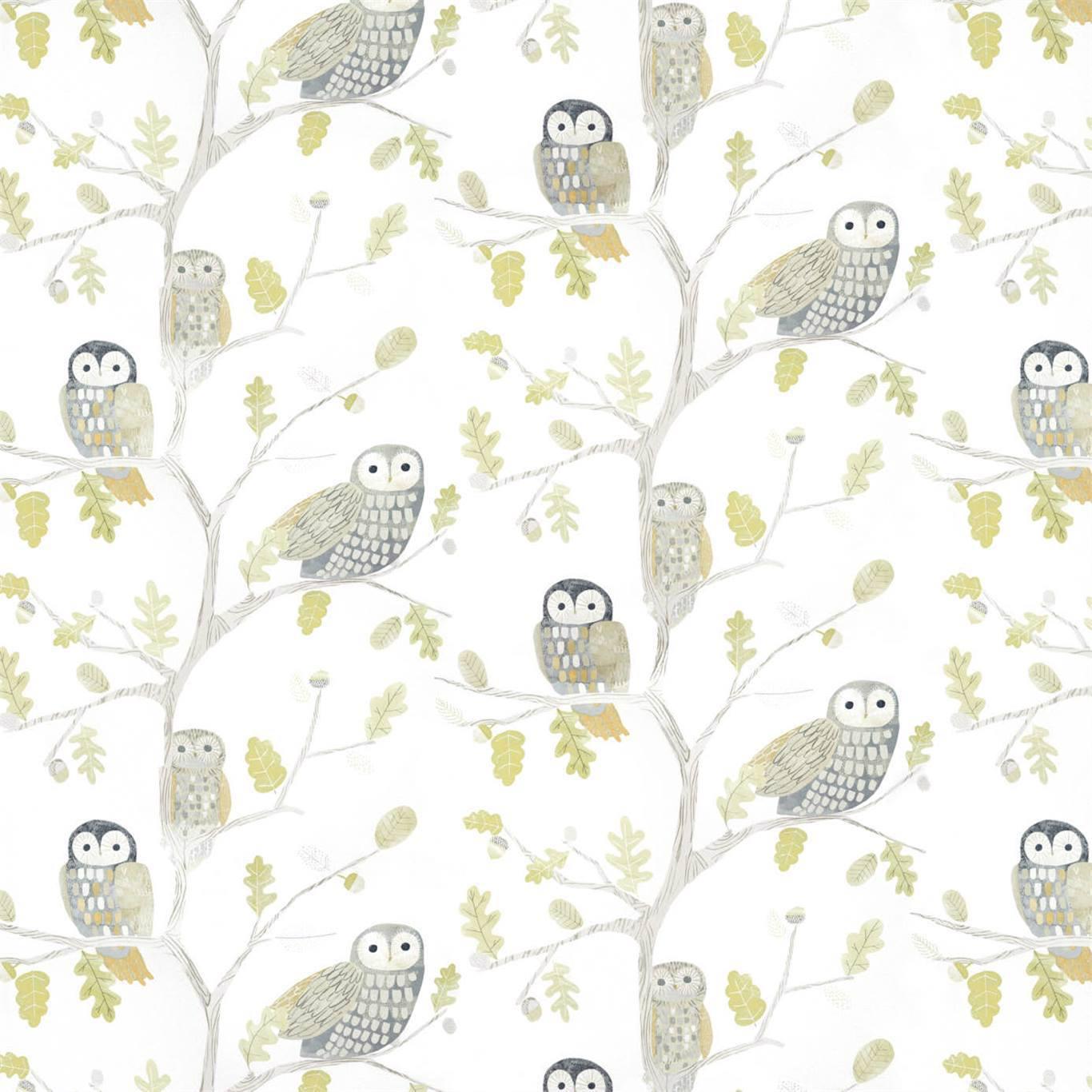 Little Owls by HAR