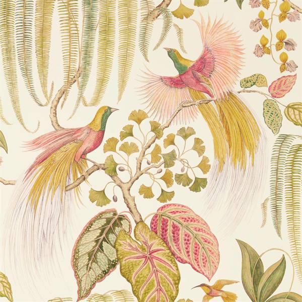 Bird Of Paradise by Sanderson