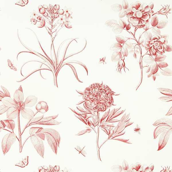 Etchings & Roses by Sanderson