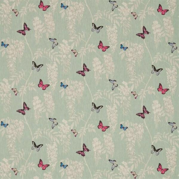 Wisteria & Butterfly by Sanderson